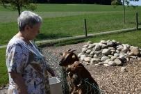Margrit Frank bei den Ziegen.